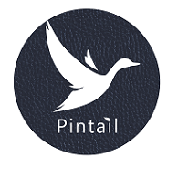 New Pintail logo